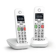 Acheter Gigaset E290 Duo
