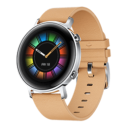 Vue 1 Huawei Watch GT2 42mm beige
